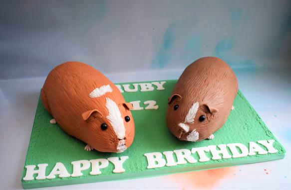 Ruby's Guinea Pigs (15).JPG
