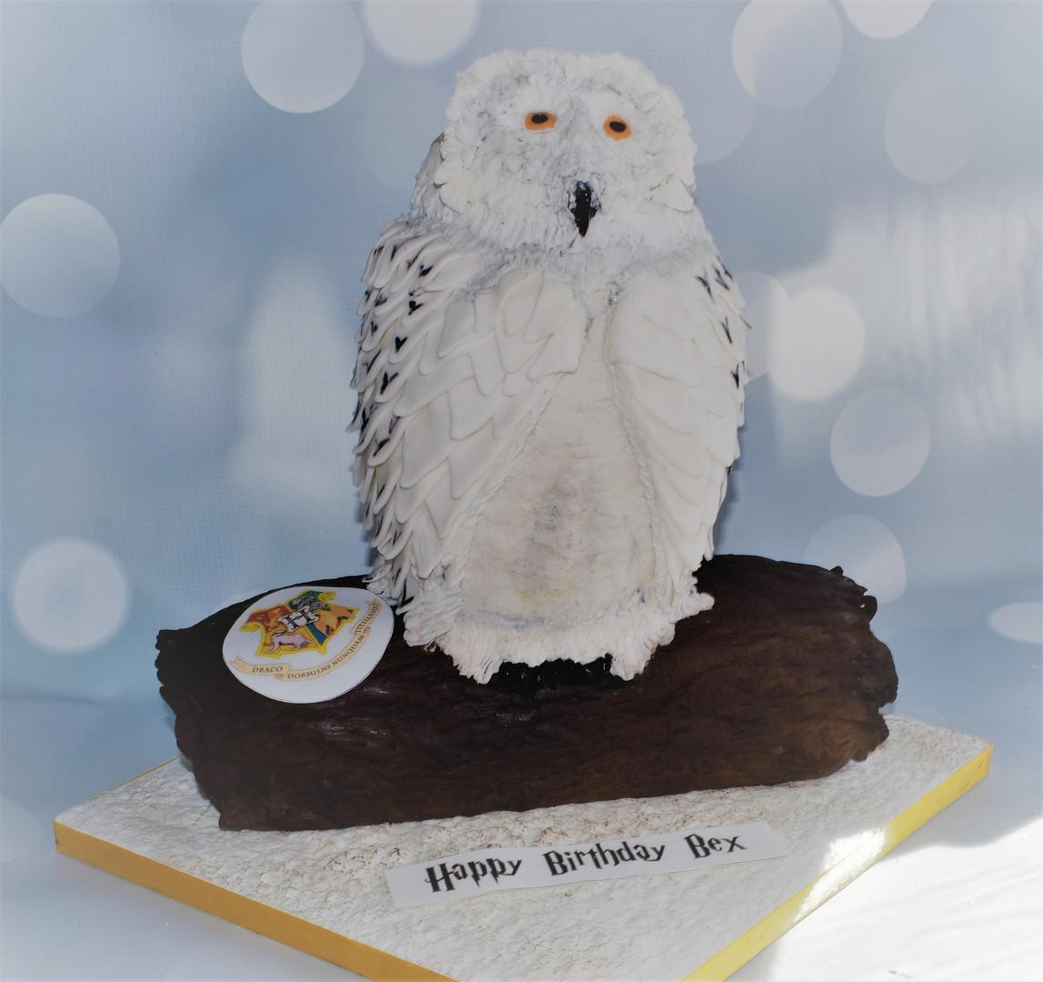 HEDWIG CAKE (7).JPG