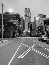 Toronto Nobody 3.jfif