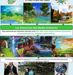 medio ambiente1.jpg
