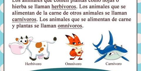 animales3.jpg