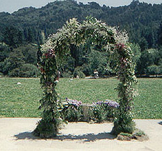 Wedding site arch and topiaries by L'Atelier D'Ambiance
