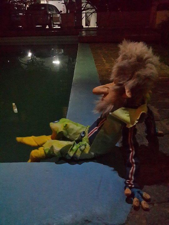 Y el Sr Alberto se dio el gusto de mojar las patas en la pileta