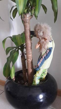 el Sr Alberto nos regó la planta