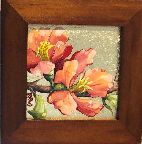 Quince Blossom II (miniature)