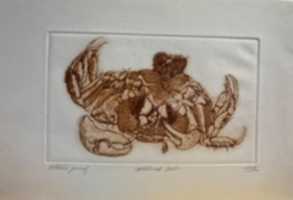 IMG_2868Upturned_Crab,_Artist's_Proof,