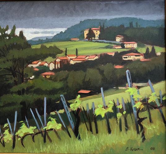 Tuscan Hillside Vines,