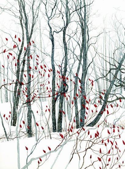 Ithaca Winter Wood