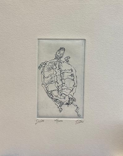 IMG_2844Swim [turtle], signed etching, 1