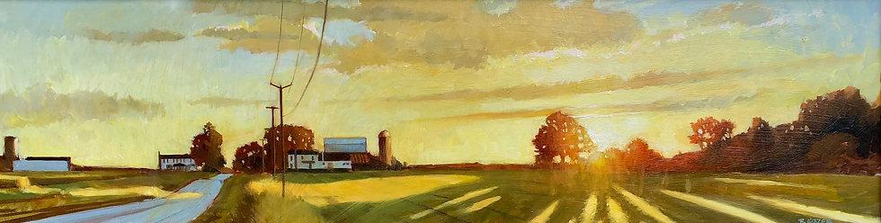 August Gold, Morgan Road, Sheldrake, NY