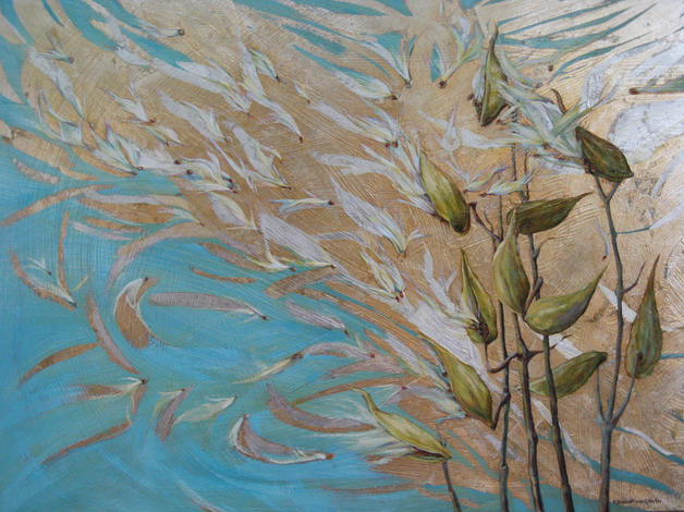 Windblown Milkweed