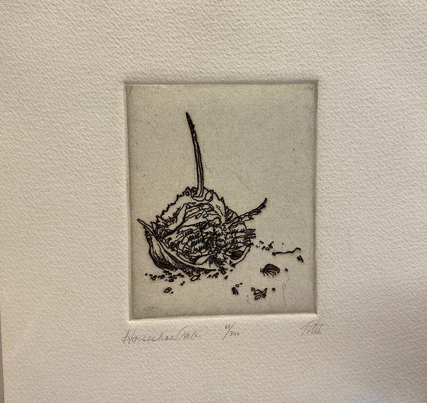 IMG_2843Horseradish, signed etching, 13