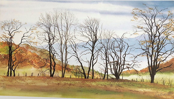 Autumn Hedgerow, signed print