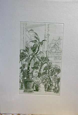 [Plants in a Window], colored etching, h