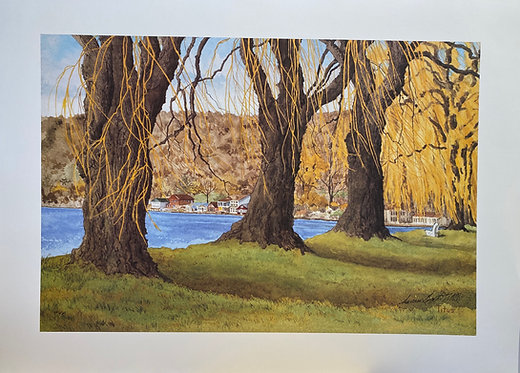 Stewart Park Three Old Willows on Cayuga Lake,