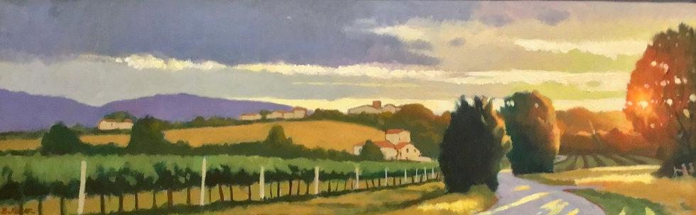 Umbrian Evening Light