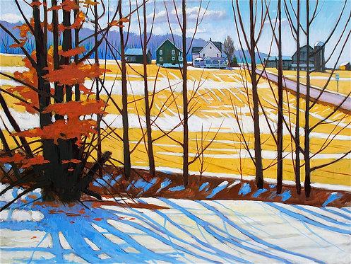 Brillian Light-Wilmot Township Winter