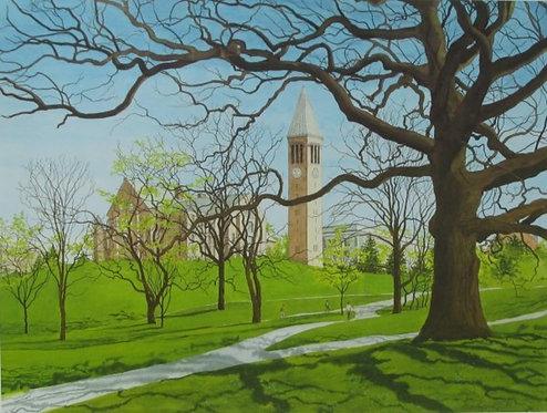 Cornell in Spring