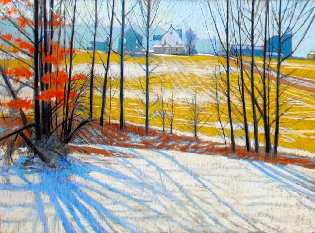 Brilliant Winter Light -Wilmot Twsp,