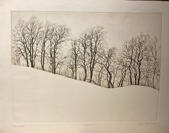 Hedgerow, etching, last state, 22x28, sg
