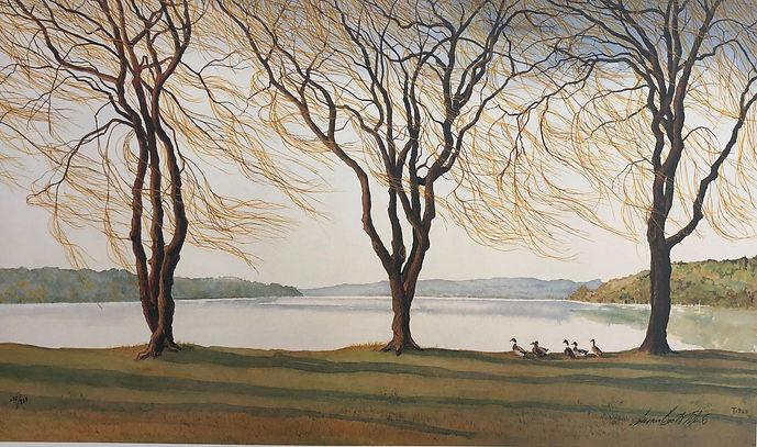 Three Willows Plus Ducks