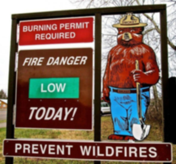 Smokey Bear Low-Permits Required.jpg