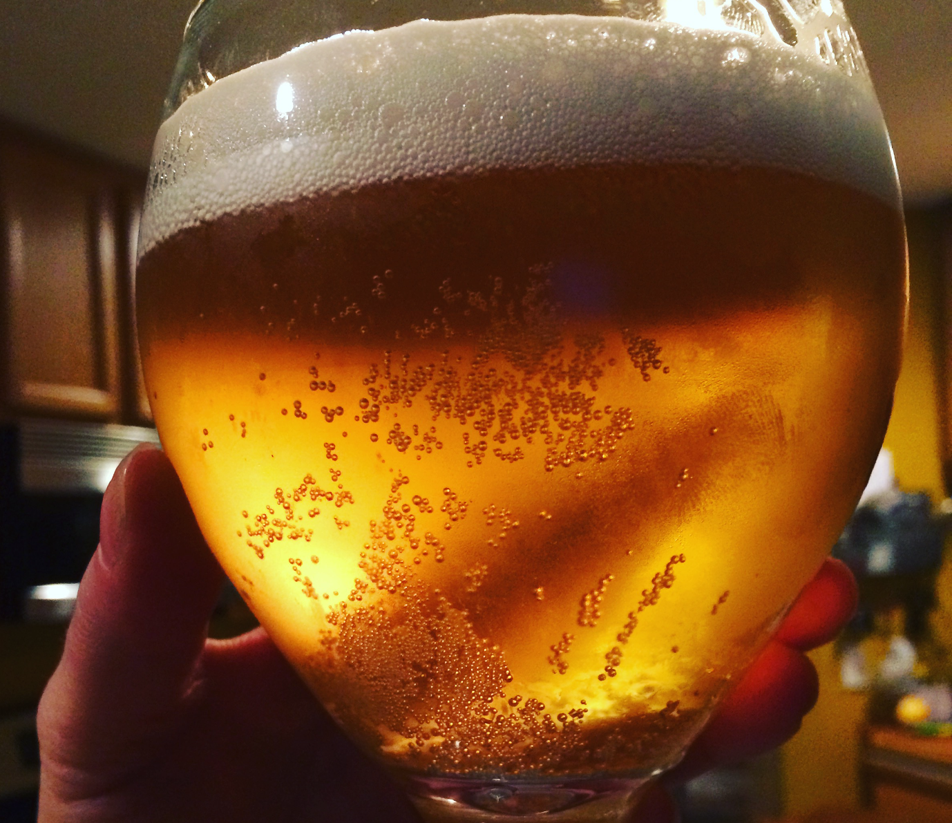 craft beer in a glass with bubbles