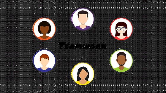 team diversity.png