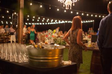 Twinkle Lights   Frederick Wedding