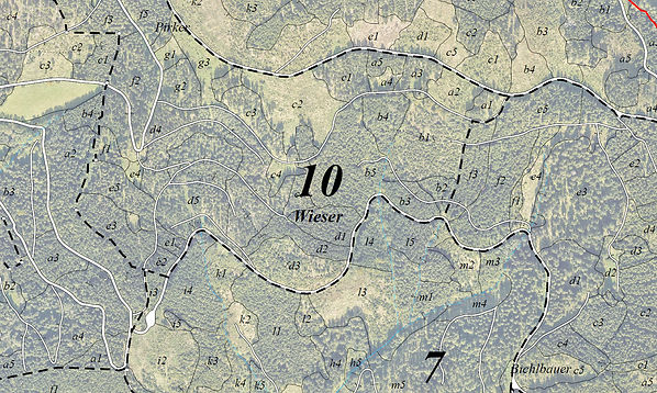 Forstkarte mit Orthophoto