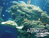 sc_aquarium.jpg