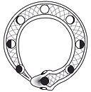 snake-with-pattern-black-01-01.jpg