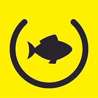 Favi Fishi.jpg