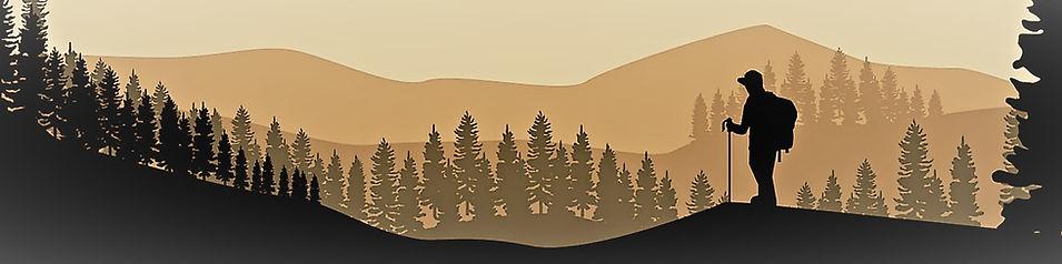 banner image 2.jpg