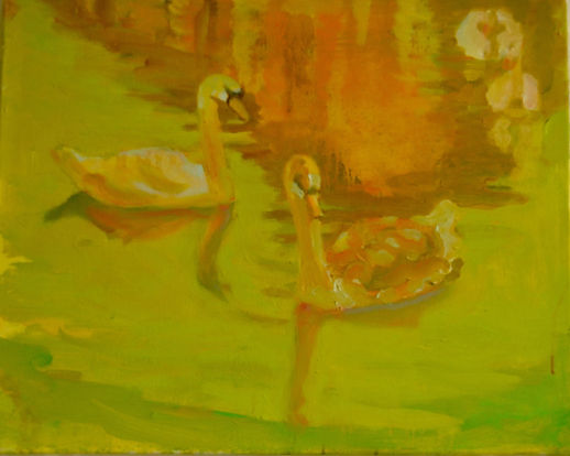 Swan Lake 2, 30x40cm Oil on Canvas