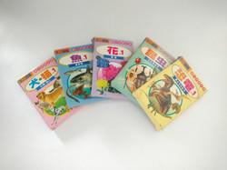 Kit Cartas de vocabulario temáticas