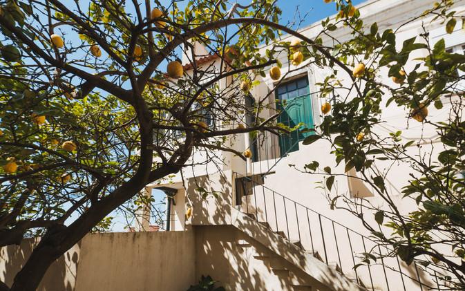 Casa_Castelo_n5-05.jpg