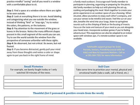 Wellness Weekly Newsletter v3