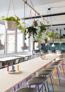Hängepflanzen und im Raum zum Zusammenkommen