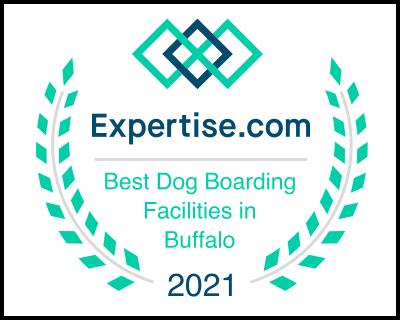 ny_buffalo_dog-boarding_2021.webp