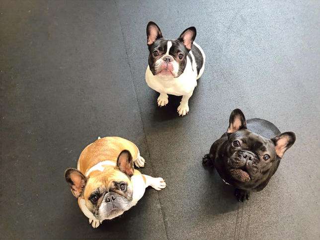 Emma/Stella/Simon