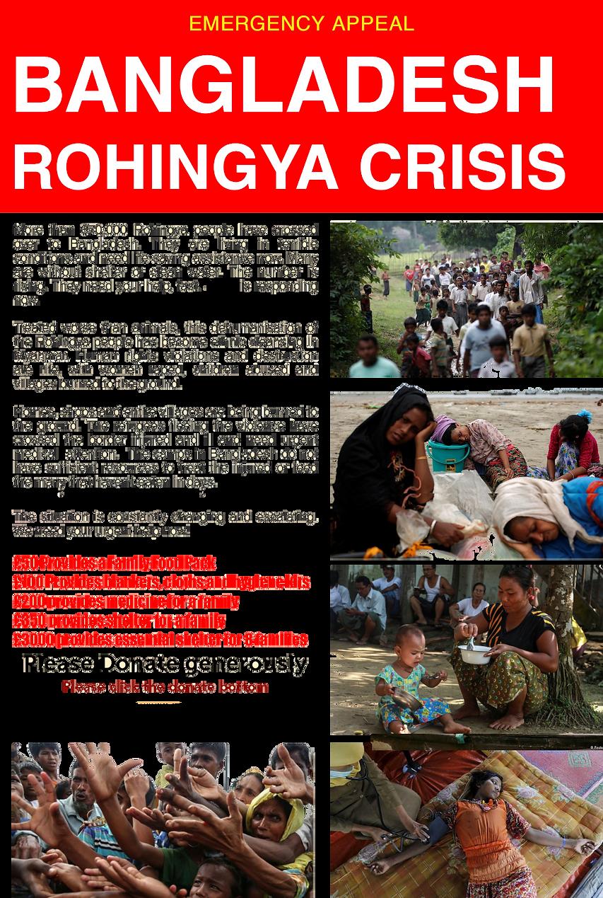 Donate for Rohingga, Rohingga Crisis