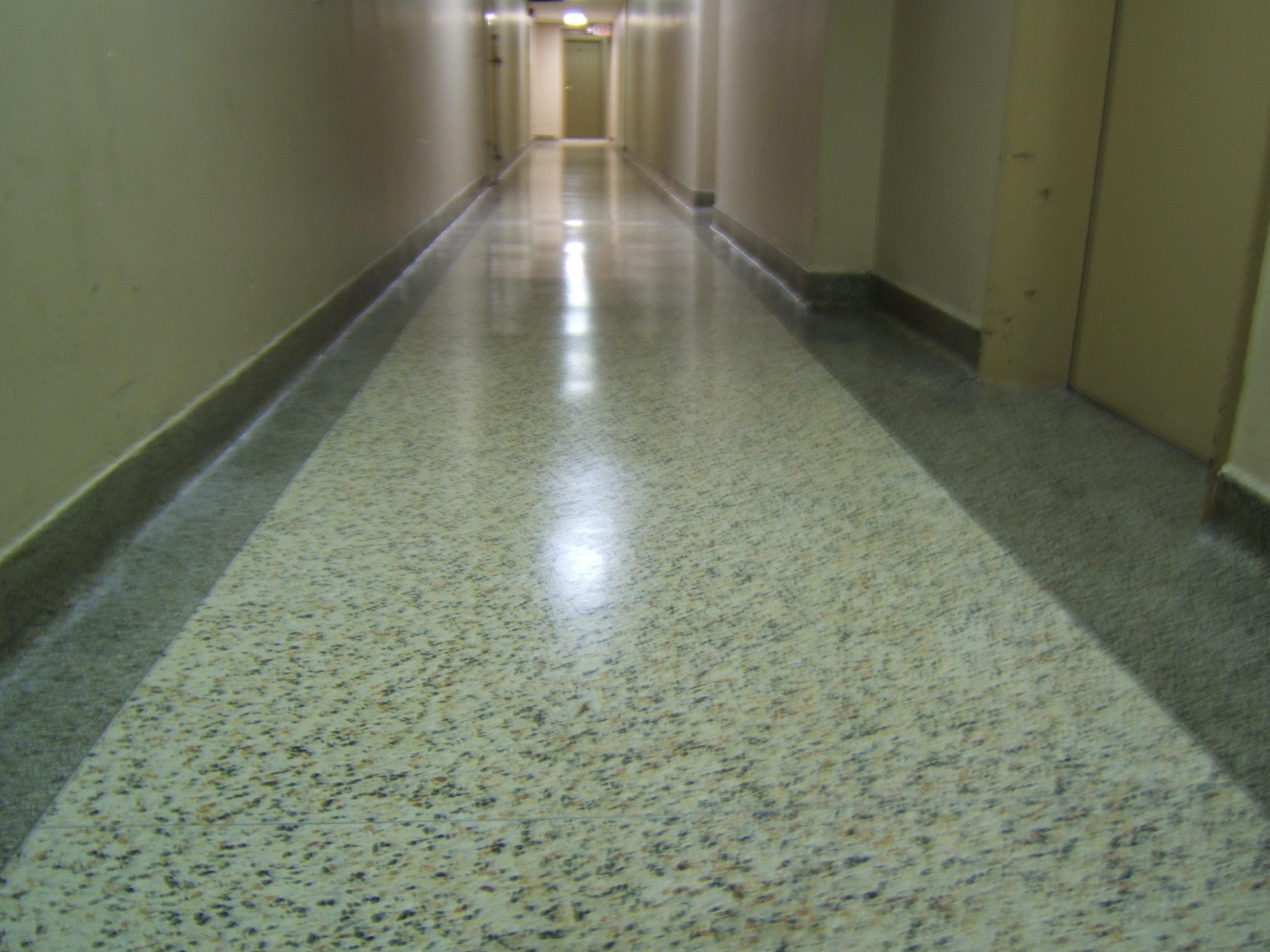 Terrazzo floor  hallway