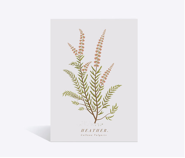 Heather Wildflower Greeting Card