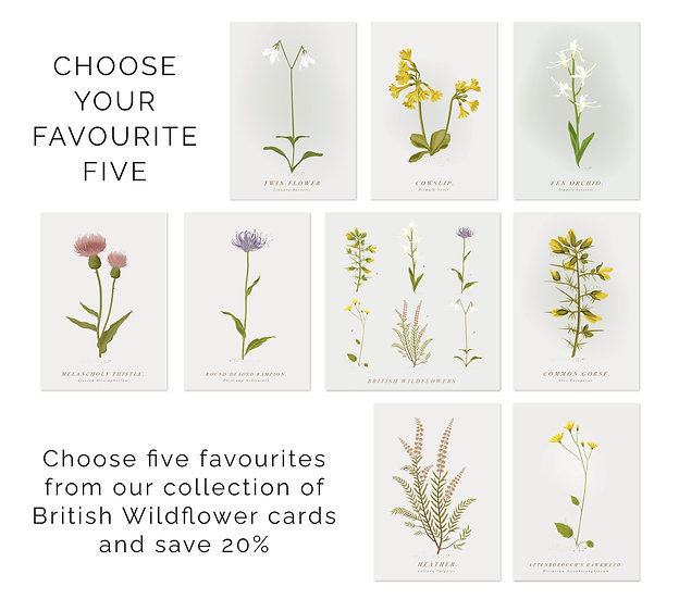 5 Mix and Match Wildflower Greeting Cards