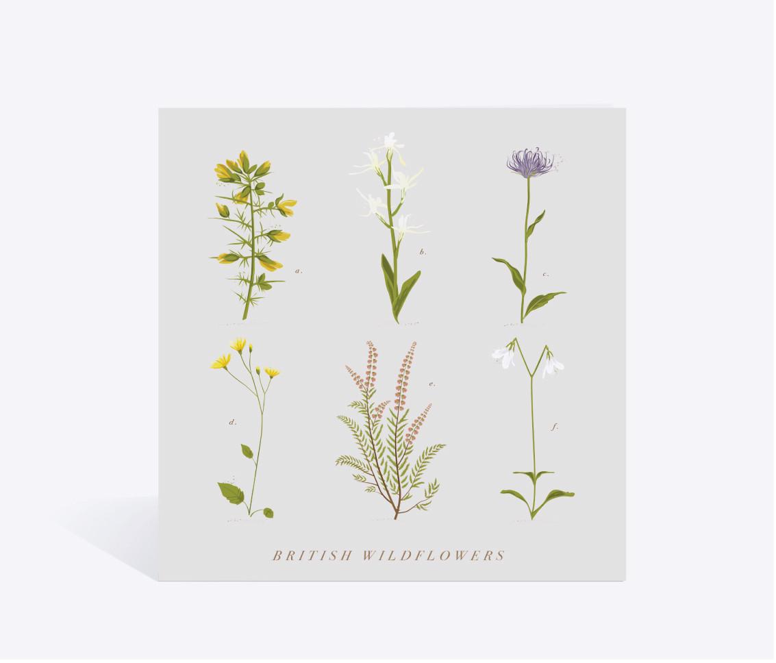 British Wildflower Card