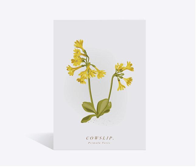 Cowslip Wildflower Greeting Card