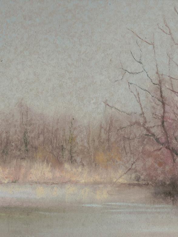 Tiède janvier Pastel, 21 x 18 cm, janvier 2020