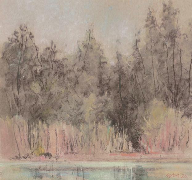 L'étang gris