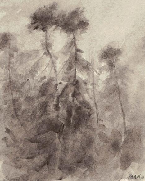 Lavis de bistre, 12 x 15 cm